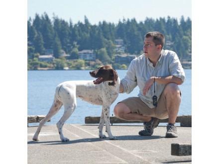 Petsafe ST100 BD elektromos nyakörv közepes és nagytestű kutyáknak PDT45-13474 4